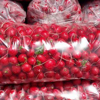 Пакеты «ЕВРОПОЛИМЕР» – достойная упаковка для любой продукции!